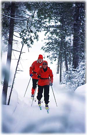 Nordic Skiers on Trail